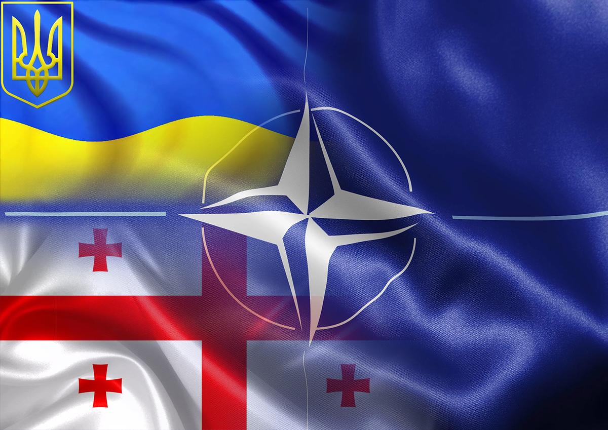 Эксперты считают маловероятным вступление в НАТО Украины и Грузии