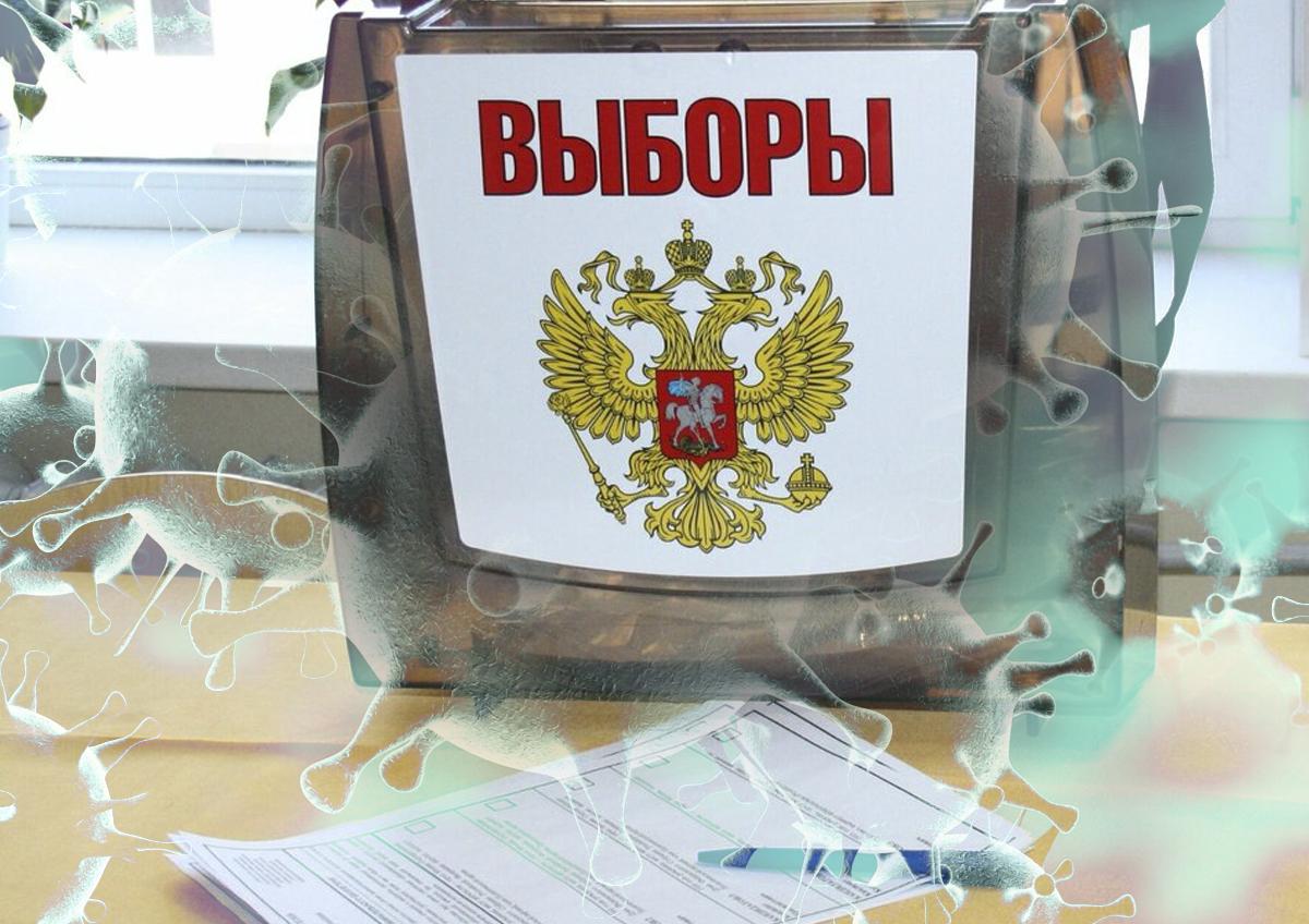 Выборы в условиях ограничений: депутаты и общественные деятели о том, как проголосовать без вреда для здоровья