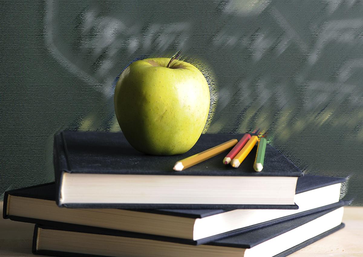 Толстой призвал дать детям больше возможностей для образования